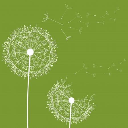 posterity: Dandelion flower desing design