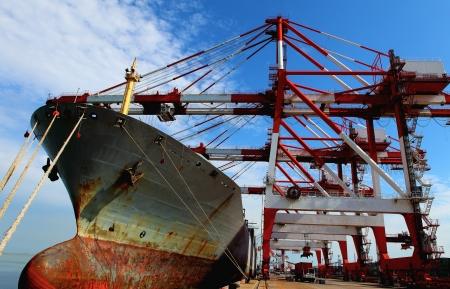 ship in the harbor  photo