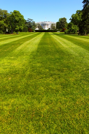 white house: The White House, the President of the United States Stock Photo