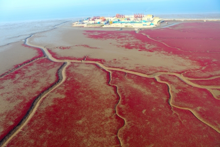 red beach  photo