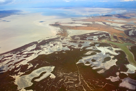 Aerial view of lush coastal wetlands  photo