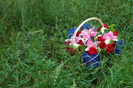 Basket of flowers on the lawn Stock Photo - 16288252