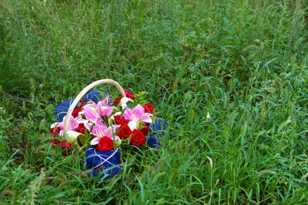 Basket of flowers on the lawn photo