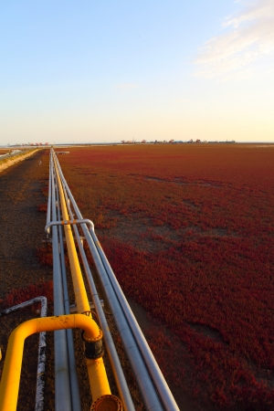 Red Beach on the oil pipeline Stock Photo