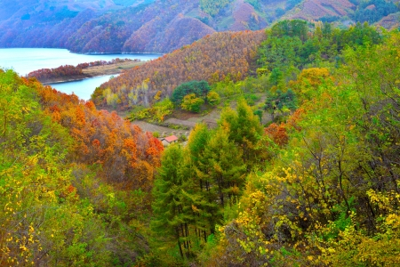 Autumn in northern China photo