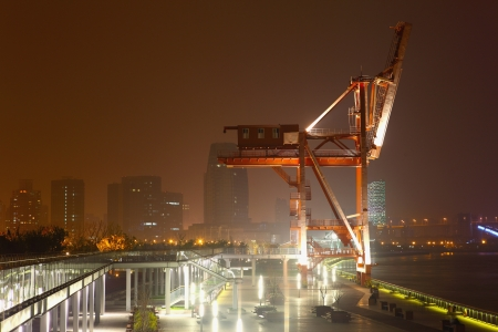cranes at night  photo