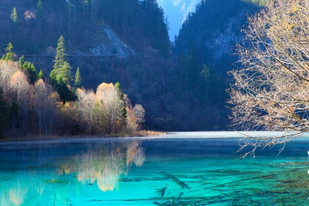 Colorful autumn scene in JiuZhaiGou,  photo