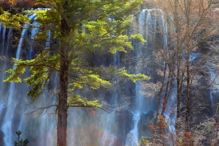 beautiful waterfall in the jiuzhaigou Stock Photo - 17046412