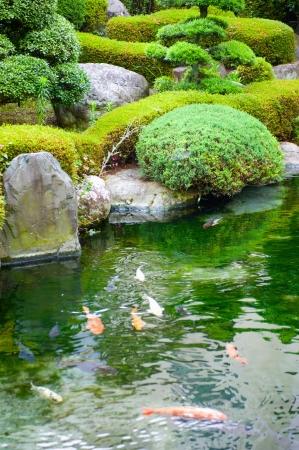 garden  Stock Photo - 17375899