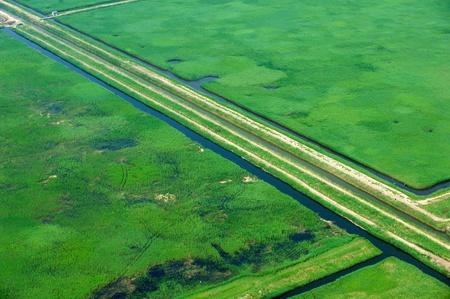 Aerial view of coastal wetlands photo