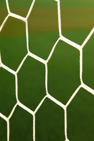 Soccer netting with grass photo