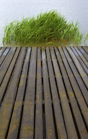 Wooden landing stage  photo