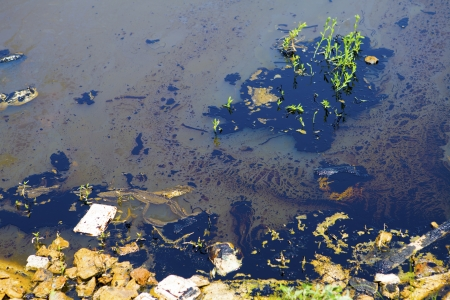 source of water: Oil pollution