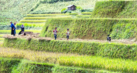 terracing: Yen Bai, Vietnam - September 25th, 2015: Scenes of family life after work woman beat me on the shoulder, the rest, two happy children in the streets on the terraces in the afternoon at Yen Bai, Vietnam