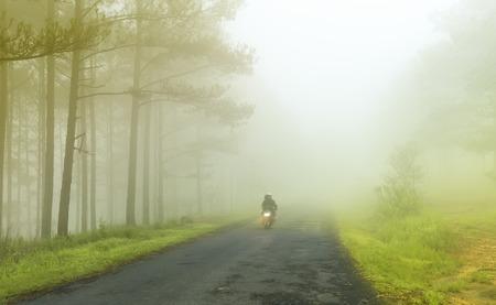 unfurl: Da Lat, Lam Dong, Vietnam - May 17, 2015: A couple running through road unfurling in an early foggy morning in Trai Mat, Da Lat, Lam Dong, Vietnam