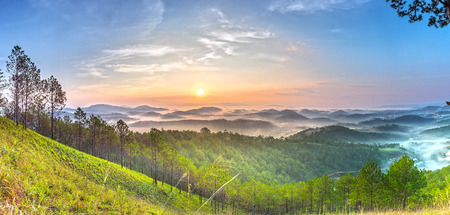 panoramic sky: Panoramic sun Rises above pine forests as the sun Rises, clouds gradually fade out gradually s? green pine forests to vast high on the hills greet the new day