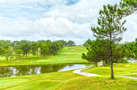 poetic: Pine tree in wind inside path to Da Lat Golf Course, with tall pines golf course inside look steadily, over rolling green hills far as the mirror Into the lyrical and lakes in the city of Dalat Poetic, Vietnam Stock Photo