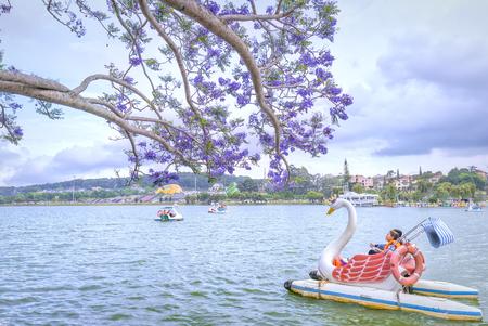 Dalat, Vietnam - March 27th, 2017: Visitors enjoy Jacaranda flowers bloom along Xuan Huong Lake in spring. This place attracts millions of visitors to Dalat, Vietnam Standard-Bild
