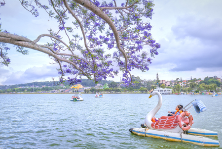 Dalat, Vietnam - March 27th, 2017: Visitors enjoy Jacaranda flowers bloom along Xuan Huong Lake in spring. This place attracts millions of visitors to Dalat, Vietnam Фото со стока