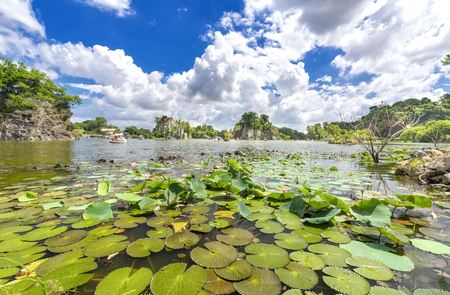 Landscape ecotourism with a large lotus pond attract tourists to resorts on weekends Stock Photo