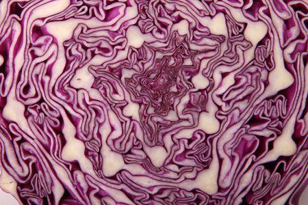 red cabbage Zdjęcie Seryjne