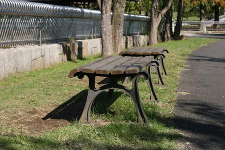 fall garden chair photo