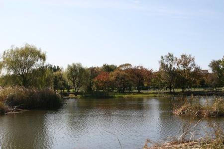 ouside: autumn lake