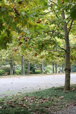 horizontals: French garden Stock Photo