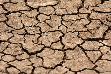 cracked earth: Dry land