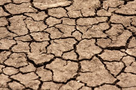 sequias: Tierra seca