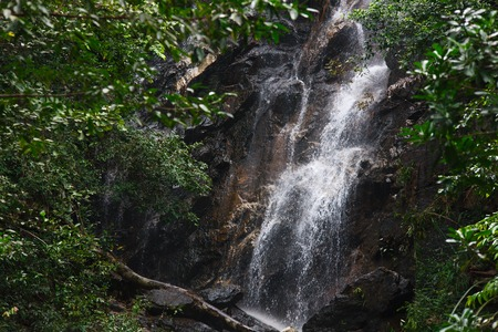 Mountain river waterfall in tropical forest. Beautiful mountain forest landscape. Stock Photo