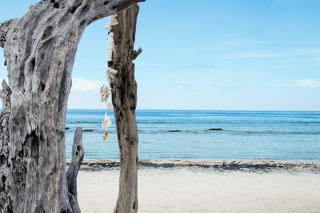 Exotic deserted beach in Bali, Indonesia. Stock image.