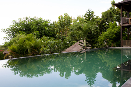 Villa Infinity Pool. A Balinese infinity pool overlooking tropical forest