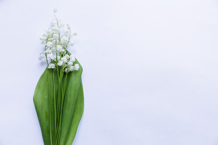 embarrassment: Bouquet of lilies lying on the surface Stock Photo