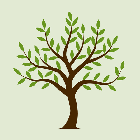 sample environment: Tree vector. Olive tree. Isolated on white background. Element design