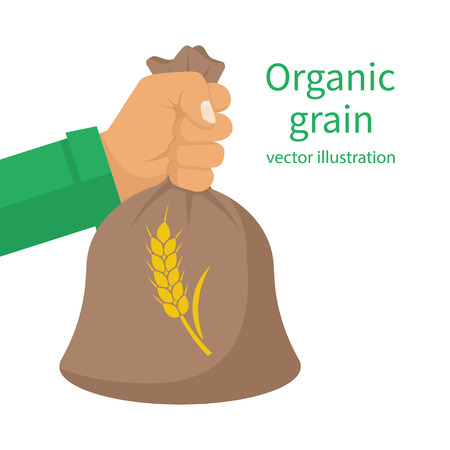 Organic grain concept. Male farmer holding a wheat bag in hands. Good grain harvest. Agriculture, harvesting. Vector illustration flat design. Isolated on white background. Illustration