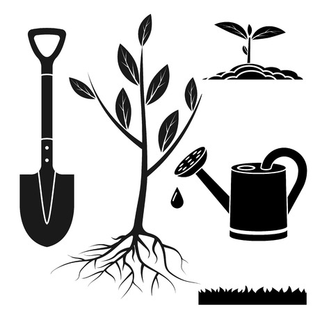 tree: Set for tree planting: sapling, watering can, shovel, sprout, ground, lawn grass. Silhouettes of garden tools, pictogram. Vector illustration flat design. Seedling agriculture.