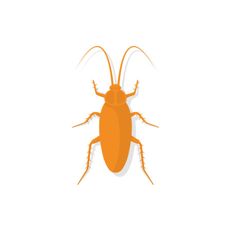 disgusting animal: Cockroach icon, isolated on white background. Kitchen bug. Insect dirty. Unhygienic concept. Vector illustration flat design.