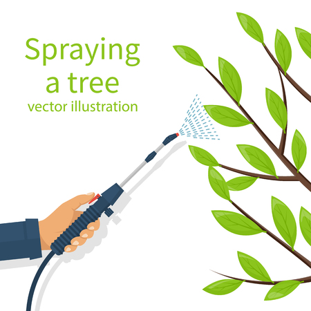 crop sprayer: Spraying pesticide. Processing of trees. Insecticide. Farmer exterminator hold sprayer fertilizer in hand. Vector flat design. Isolated on white background. Chemicals in garden. Deciduous branches. Illustration