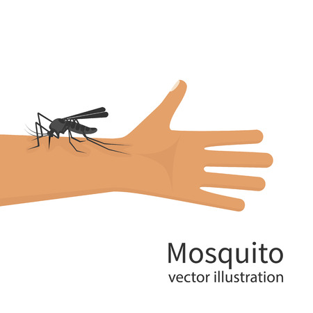 Mosquito bite on skin hand human vector