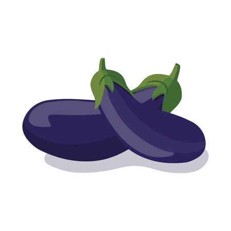 Fresh purple eggplants on a white background. Tasty vegetable. Eggplant violet icon. Can be used as emblem, web print, sticker. Vector illustration.