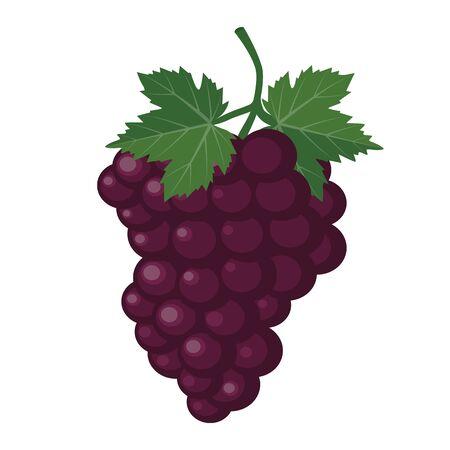 Grapes cartoon icon