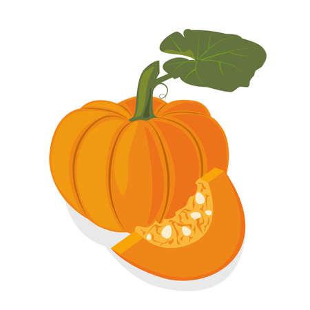 Fresh ripe orange pumpkin