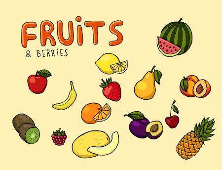 Colorful hand drawn vector fruits and berries illustration. Ilustrace