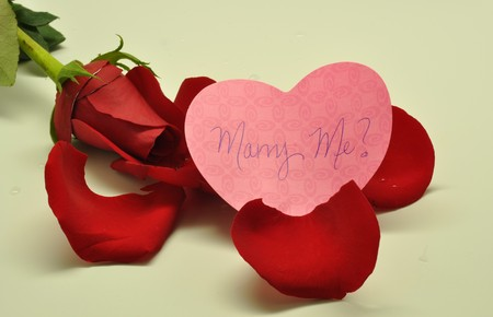 red rose and marriage proposal Stock Photo