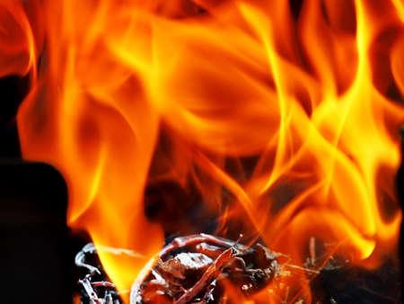 burnt firewood photo