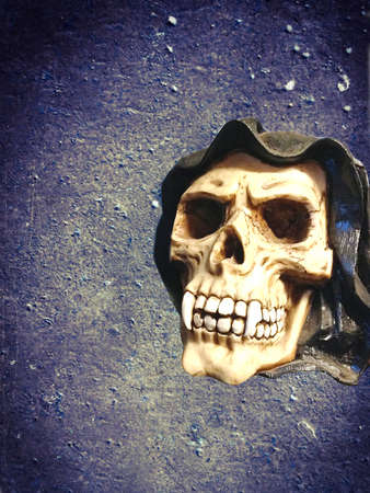 canine: horror skull with canine teeth on concrete wall background