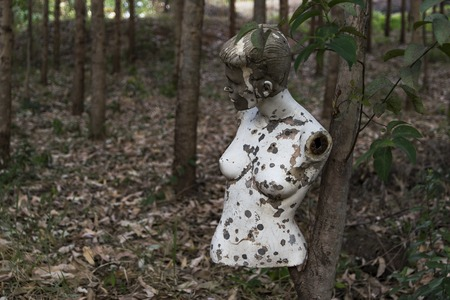 abandoned mannequin in forest