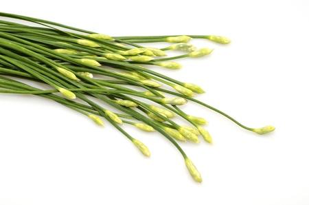 cebollin: Un manojo de cebollino de ajo sobre fondo blanco Foto de archivo