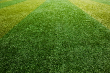 playing field: green grass texture from a soccer field.